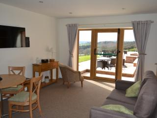 Bright 2 bedroom Burrington Apartment with Balcony - Burrington vacation rentals