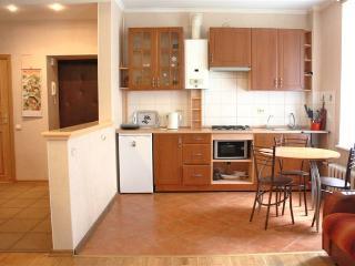 Marata 22, 2-bedroom apartment - Saint Petersburg vacation rentals