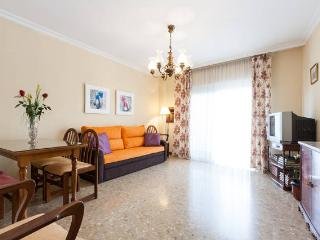 SPACIOUS APARTMENT Triana SEVI - Province of Seville vacation rentals