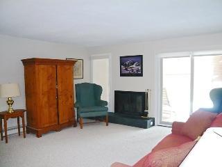 Bonne Vie #2202, Elkhorn - LONG TERM RENTAL - Nebraska vacation rentals