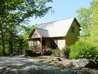 Chimney Lure Retreat-Lake Lure Log Cabin Mtn Views - Lake Lure vacation rentals