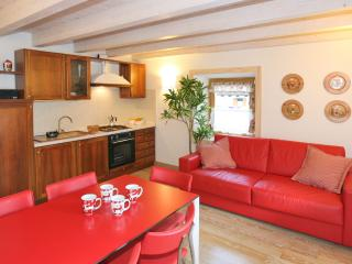 Bright 2 bedroom Condo in Falcade with Internet Access - Falcade vacation rentals