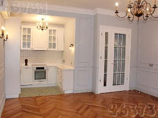 Spa-Apartment 2 rooms 5min to Kremlin - Moscow vacation rentals