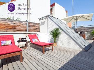 Beautiful triplex w/ terrace - Barcelona vacation rentals