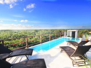 Luxury Design Suite, Sky Pool,Wifi , Top of Tulum - Tulum vacation rentals