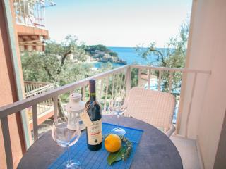 Studios Mona- Studio with Balcony and Sea View 1 - Montenegro vacation rentals