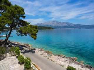 Apartments Nikolina-Studio with Sea View - Island Korcula vacation rentals