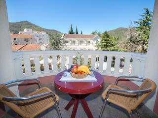 Apartments Dimić Ellite - Double Room with Balcony 3 - Budva vacation rentals