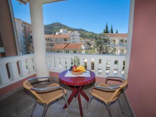 Apartments Dimić Ellite - Triple Studio with Balcony 5 - Budva vacation rentals