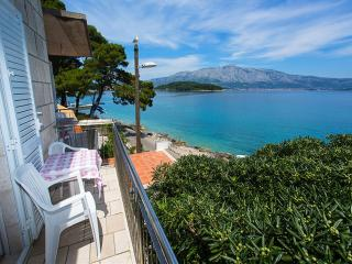 Apartments Nikolina-One-Bedroom Apartment with Balcony - Island Korcula vacation rentals