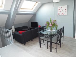 Le Logis du Château (appartement Le Napoléon) - La Roche-Guyon vacation rentals