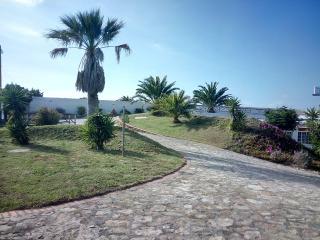 Piscina aquecida-jardim-actividades- 2/4 - Rosa - Ericeira vacation rentals