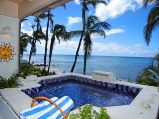 Reeds House 10 - Saint John Parish vacation rentals