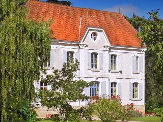 Chateau De La Cheine - Montcaret vacation rentals