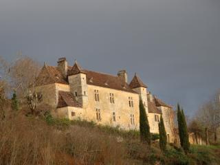 Chateau Rochette - Cenac-et-Saint-Julien vacation rentals