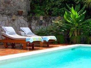 Lovely House with Internet Access and Private Outdoor Pool - Saint Lucia vacation rentals
