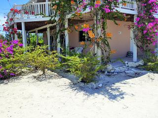 Windrose Cottage - Providenciales vacation rentals