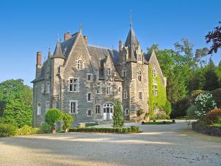 Chateau De Chasse - Langon vacation rentals
