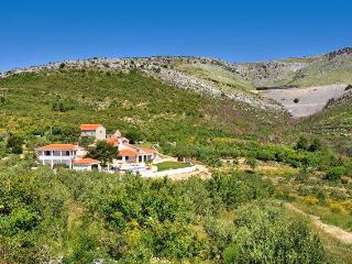 Villa Maslina - Split-Dalmatia County vacation rentals