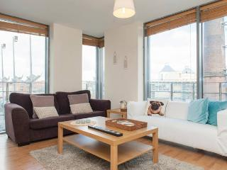 Large Central Dublin Apartment 26 - Dublin vacation rentals