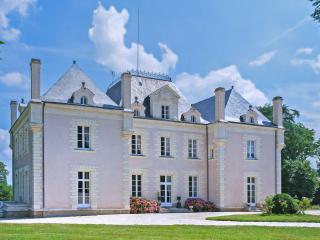 7 bedroom House with Internet Access in La Haye Fouassiere - La Haye Fouassiere vacation rentals