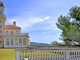 Chateau De La Victoire - Greolieres vacation rentals