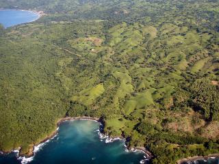 Paradise Tree House - Las Tablas vacation rentals