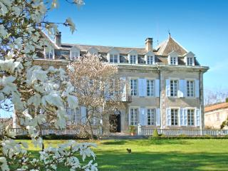 Bright 7 bedroom Encausse-les-Thermes House with Private Outdoor Pool - Encausse-les-Thermes vacation rentals