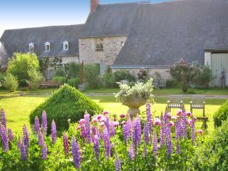 Romantic House with Fireplace and DVD Player - Varennes sur Loire vacation rentals
