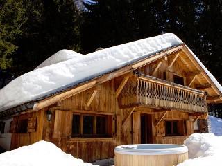 Mountain Chalet - Rhone-Alpes vacation rentals