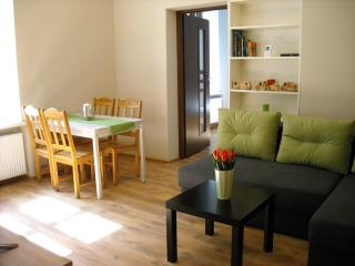 Nice Condo with Internet Access and Television - Krakow vacation rentals