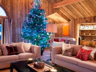 Bright 6 bedroom House in Meribel with Internet Access - Meribel vacation rentals