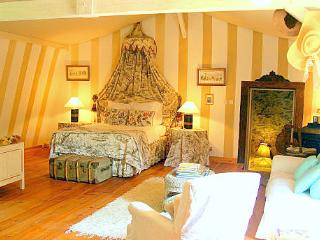 Charming House with Internet Access and Satellite Or Cable TV - Lalandusse vacation rentals