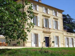 Chateau Petit - Seissan vacation rentals