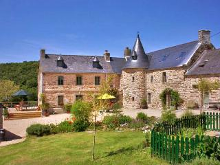Beautiful 7 bedroom House in Tremel - Tremel vacation rentals