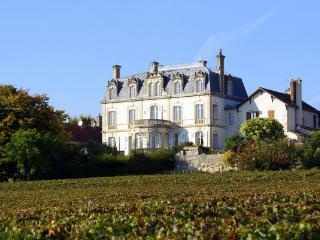 Chateau De Naugues - Mercurey vacation rentals