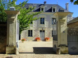 Chateau De Grazay - Descartes vacation rentals