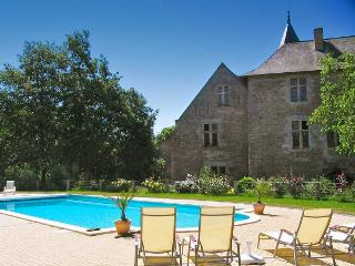 Chateau De La Chance - Faye-d'Anjou vacation rentals