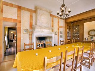 Chateau De Tille - Loire Valley vacation rentals