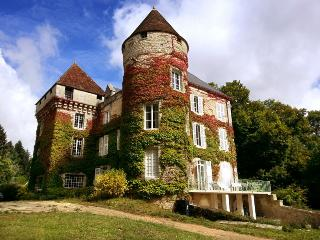Chateau De Cheimeray - La Roche-Posay vacation rentals