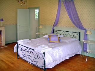 Chateau De Cheimeray - Loire Valley vacation rentals