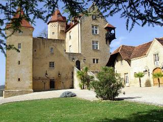 Chateau De Bearn - Gelos vacation rentals