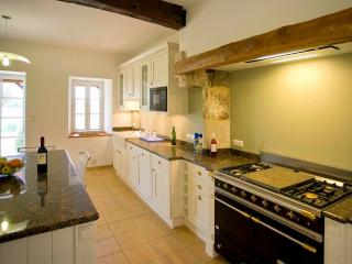 Perfect 8 bedroom Valence sur Baise House with DVD Player - Valence sur Baise vacation rentals