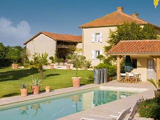 Perfect House in Trie-sur-Baise with Private Outdoor Pool, sleeps 8 - Trie-sur-Baise vacation rentals