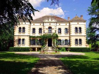 Chateau Gaillac - Fauch vacation rentals