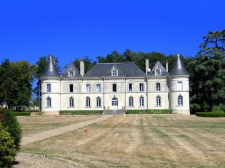 Charming House with Internet Access and DVD Player - Savigny-sous-Faye vacation rentals