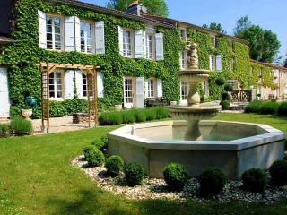 Perfect 9 bedroom Annepont House with DVD Player - Annepont vacation rentals