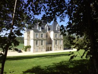 Chateau Segalin - Poitiers vacation rentals