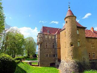 Chateau Aubepine - Villeurbanne vacation rentals