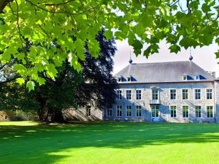 Chateau Alois - Ciney vacation rentals